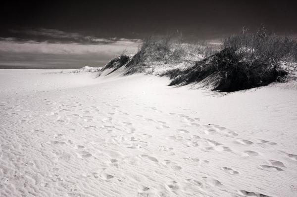 Assateague Island Footprints, Maryland | black & white infrared photography |