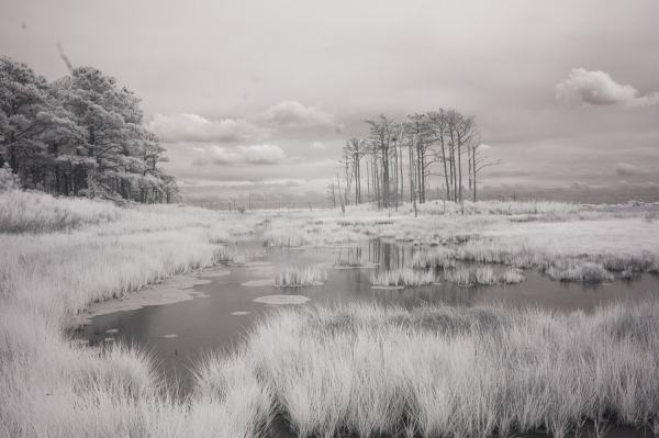 Hoopers Island, Maryland | black & white infrared photography |