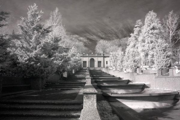 Malcolm X Park, Washington DC | black & white infrared photography |