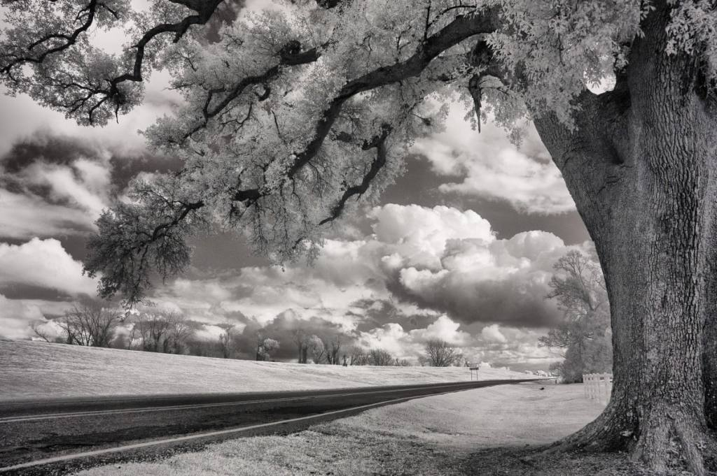 River Road |  black & white photography