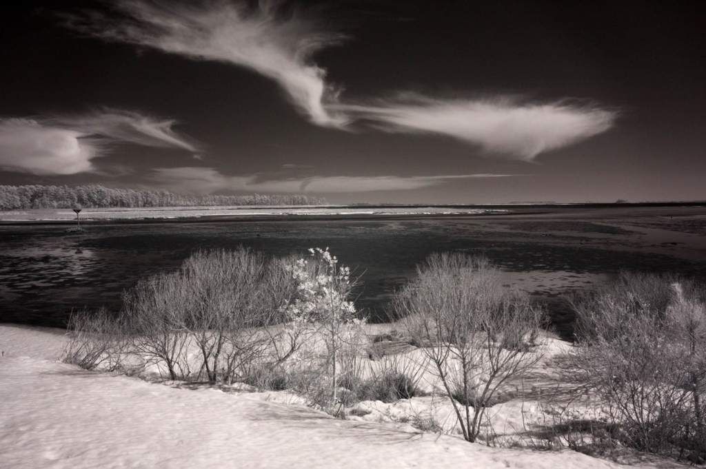 Clouds over Blackwater Refuge | black and white photography print By Jacqueline LaRocca