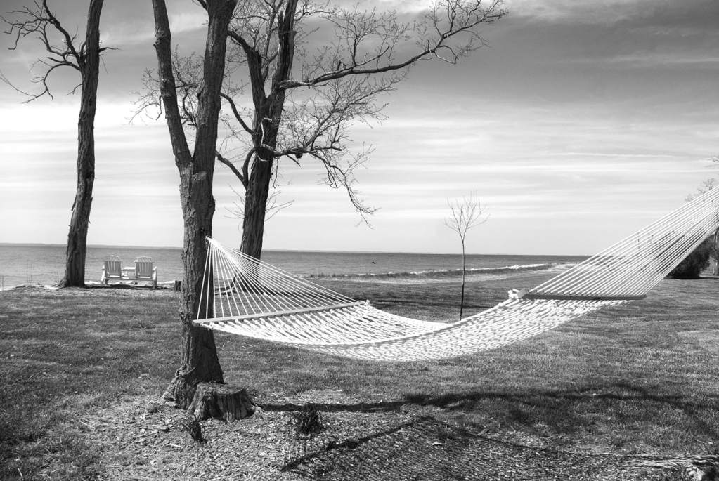 Hammock on Black Walnut Point | black and white photography print by Jacqueline LaRocca