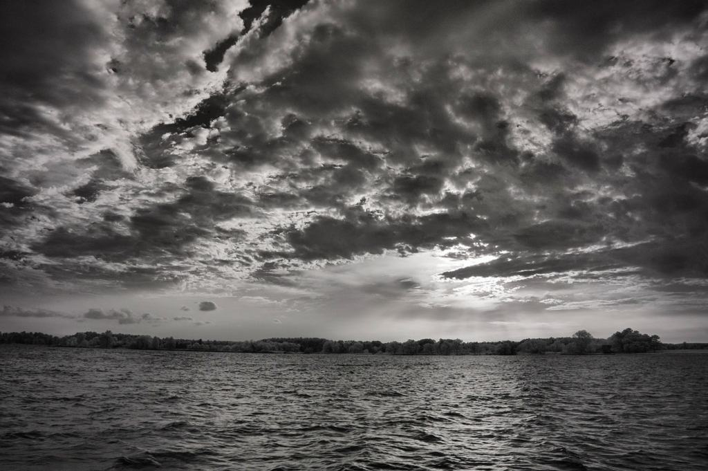 Tred Avon River | black and white photography print by Jacqueline LaRocca
