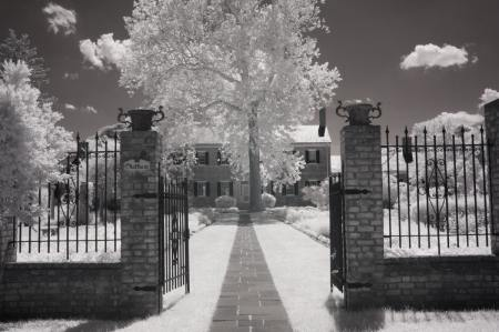 Chatham Manor fine art infrared black and white photography by Jacqueline LaRocca