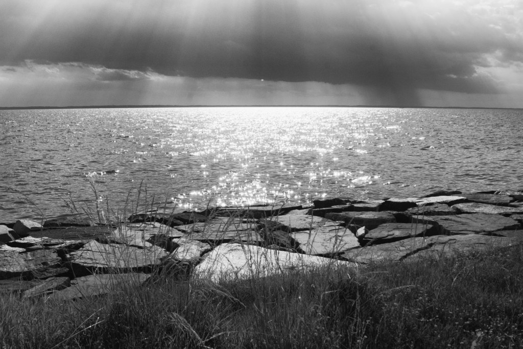 Chesapeake Bay Tilghman Island | black and white photography by Jacqueline LaRocca