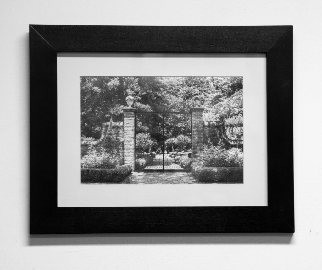 Jacqueline LaRocca Photography Framed Print